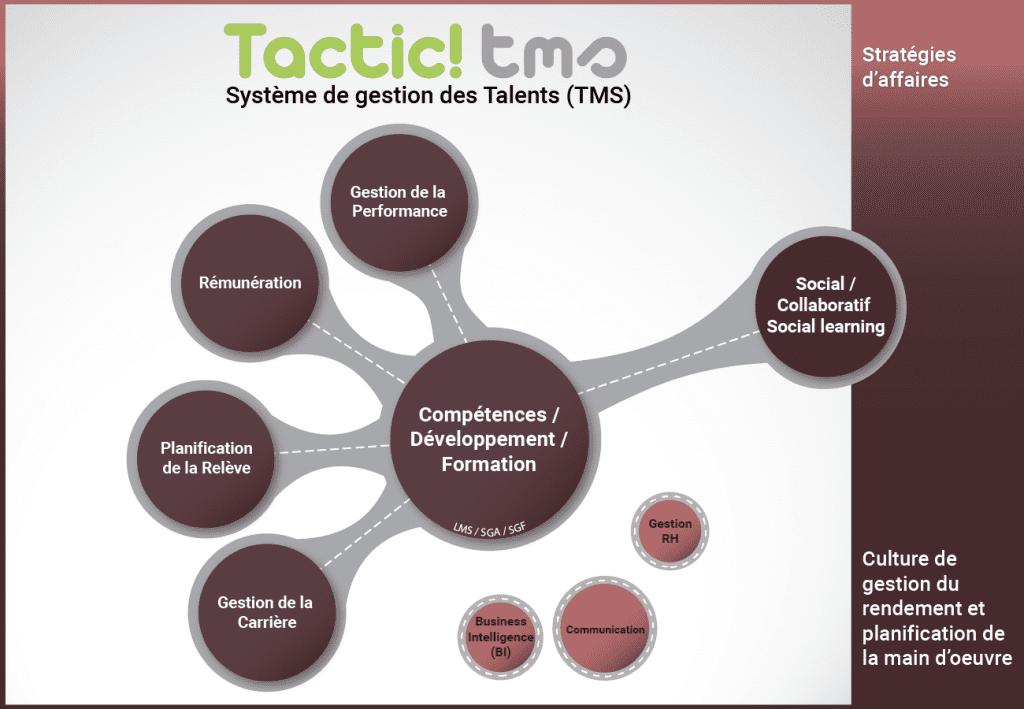 systeme de gestion des talents (TMS) - compétences / développement / formation